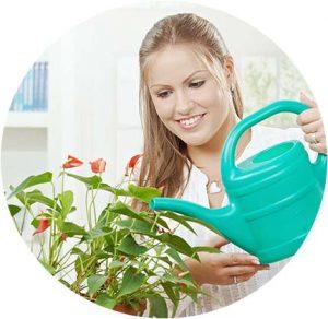 поливане на цвете